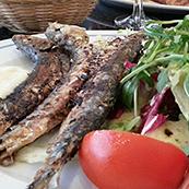 nl-sardinas